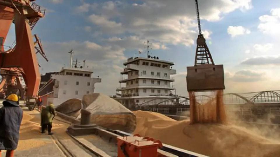 Granos: la firma china Cofco ya es la segunda exportadora del país
