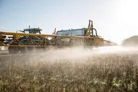 Hay expectativa por la renovación de la licencia del herbicida que se usa en el campo