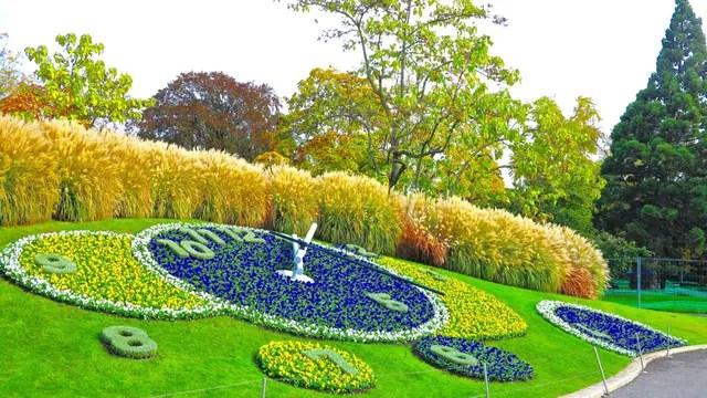 De flores en Zúrich