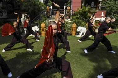 En 2008, el líder espiritual Su Santidad Gyalwang Drukpa las animó a aprender kung-fu