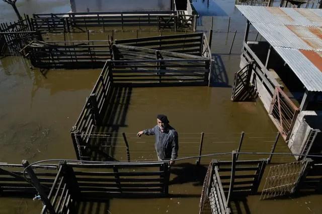Luis Bressan, perdió su criadero de cerdos de 1500 animales. Hace 18 meses tiene el campo cubierto de agua