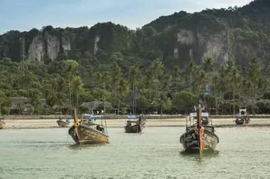 Long tails boats, en Phi Phi Island Village
