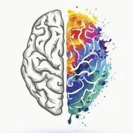 El comportamiento está vinculado a cómo nuestro cerebro divide las tareas por hemisferio.