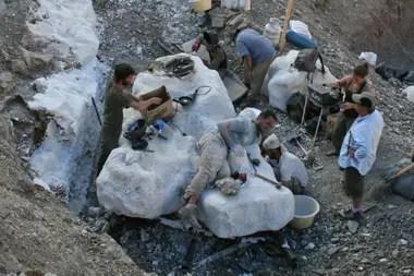 Un equipo de paleontólogos del Museo Egidio Feruglio de Trelew trabajó durante dos años en el Cerro Cóndor, en Chubut