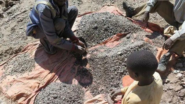 François y su hijo Charles (13) ordenan las piedras extraídas de una mina de cobalto antes de ir a un intermediario de minerales