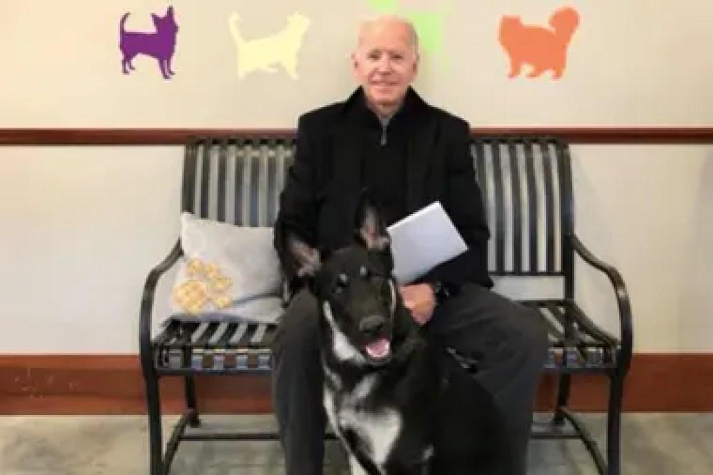 """Joe Biden junto a su perro """"Major"""" en el día de su adopción (Facebook)"""