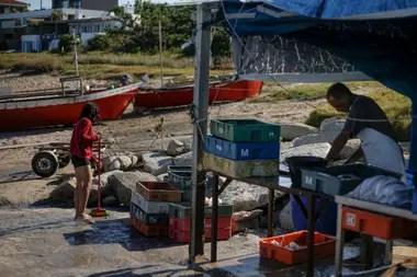 El precario puesto a donde llegan los vecinos de José Ignacio y alrededores a comprar el pescado fresco. A pocos metros llegan las barcas con la pesca del día