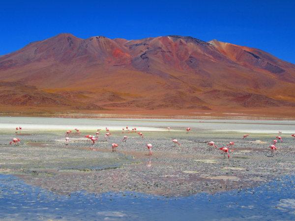voyage sportif et aventure bolivie