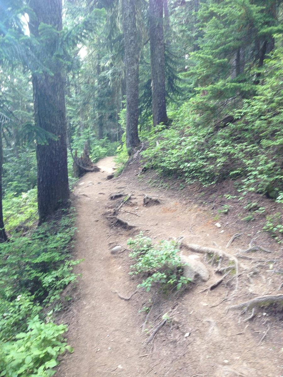 switchback hiking