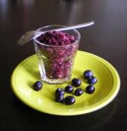 Blueberry Sorbet