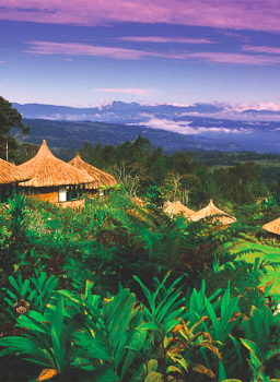 The Official Website of Papua New Guinea Tourism - Travel ...
