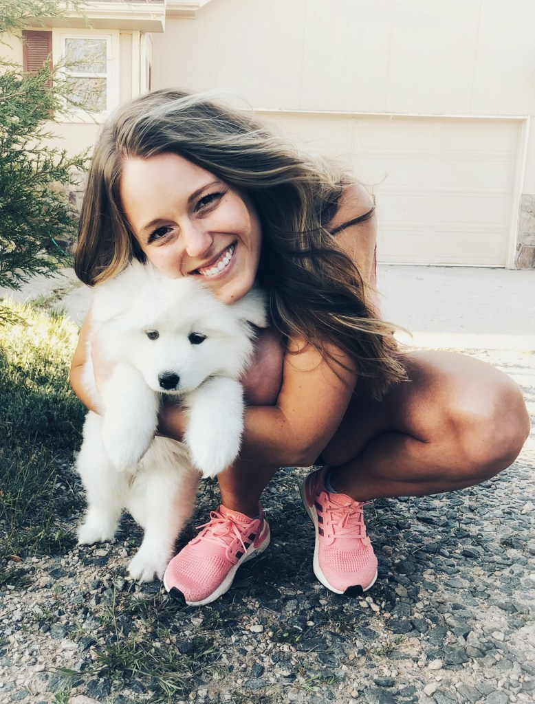 Baby samoyed puppy with new owner