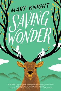 book cover Saving Wonder