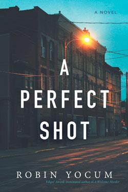 book cover A Perfect Shot