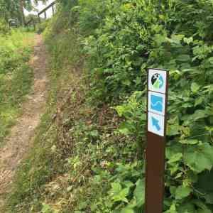 Buck Hill MTB Trails
