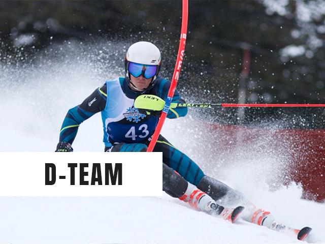 D-Team