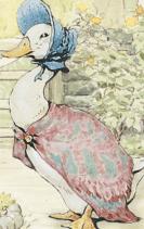Pit Pat Puddle Duck