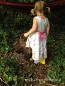 Picking Pears www.buckinghamvintage.co.uk