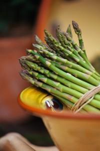 Asparagus; MSClipArt