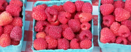 Raspberries; photo credit L. Goldman
