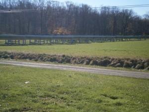 Solar panels at Fulper Farm; photo credit Lynne Goldman