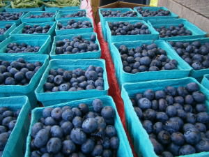 Blueberries from Shady Brook Farm