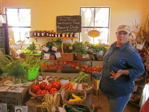 Brenda Slack, farmer, Milk House Farm