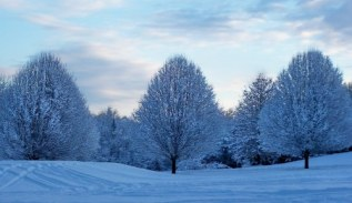 Bucks County snow; photo by L.Goldman