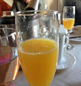 Barley Sheaf Farm mimosa; (c) 2014 L. Goldman