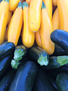 Summer Squash, photo credit Lynne Goldman