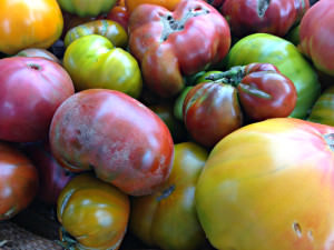 heirloom tomatoes_BGF_2_july 19 2014