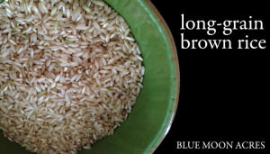 Blue Moon Acres_brown rice
