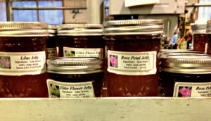Bucks County Preserves