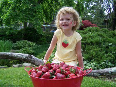 Peddlers Village Strawberry Festival
