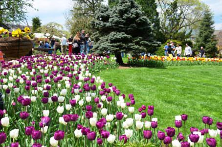 Spring Fling, Peddlers Village Facebook