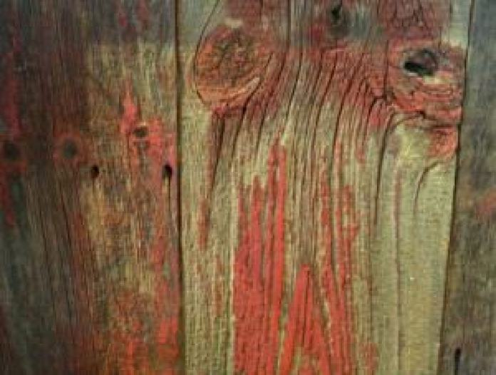 Barn wood wall at the Lumberville General Store