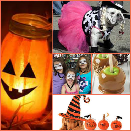 Halloween collage Wrightstown Farmers Market photo credit L. Goldman