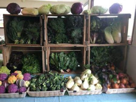 Wrightstown Farmers Market produce