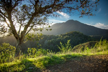 Hiking Marin Headlands with Kerry Obrien, San Francisco