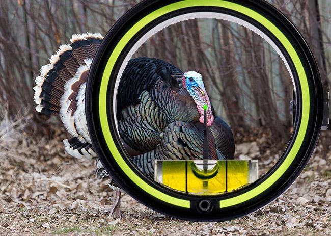 Neck Turkey