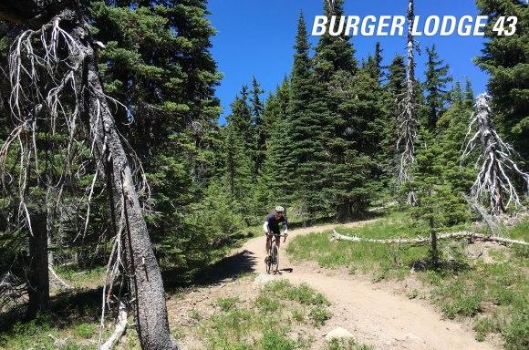 burger_lodge_title routes