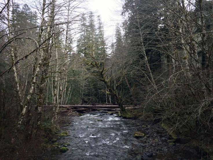winter_creek_06