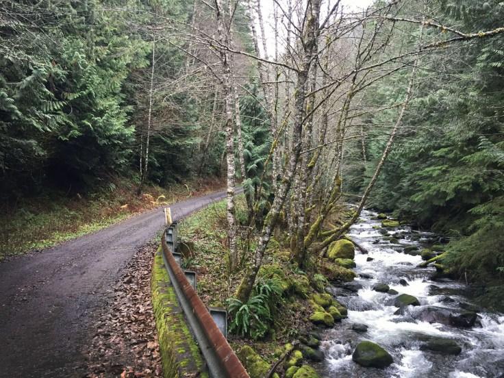 winter_creek_13
