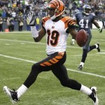Bengals re-sign a WR and it's not Sanu