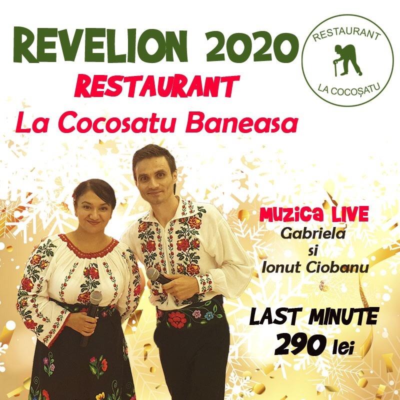 La Cocosatu revelion oferta
