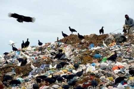 Toate gropile de gunoi ale Bucurestiului sunt ilegale si toti primarii se fac ca lor nu le miroase!