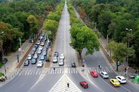 Primaria intra cu DRUJBA in copacii de pe Bulevardul Kiseleff!