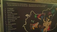 My attempt at getting a shot of the wine regions of Hungary. Was a bit cramped in the cellar...