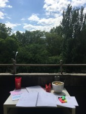 Took my studying outside!