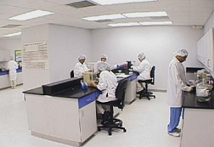 Hair Tissue Mineral Analysis, hair analysis, hair tissue analysis, (HTMA), hair mineral analysis, analytical test, laboratory test, mineral composition of hair, screening aid, mineral deficiencies, mineral excesses, mineral imbalances, Trace Elements, Budalab, toxins, toxic, Trace Elements Inc, Trace Elements laboratory, lab test, mineral supplement, nutritional supplement